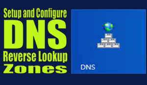 Setup and Configure DNS Reverse Lookup Zones