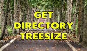 Get Directory Tree Size Using Powershell